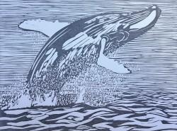 Whale Dream